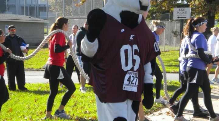 Chick Fil A Cow at Homecoming 5K